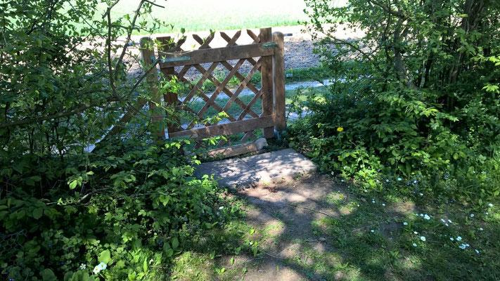 Gartentür vorher