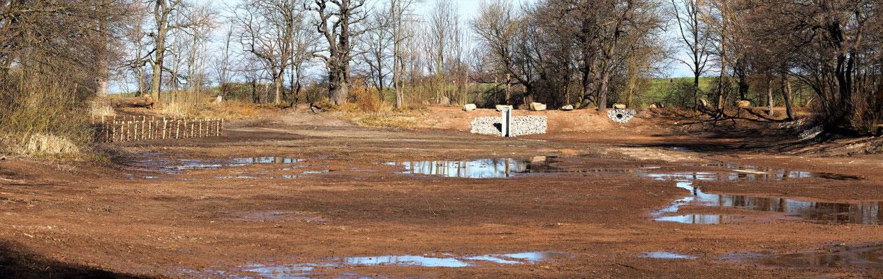 Blick auf den Damm aus der Teichmitte