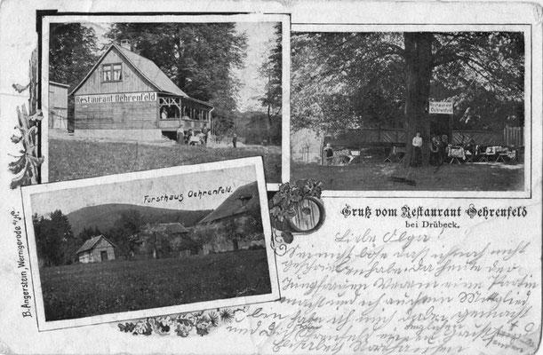 Oehrenfeld, 1902, Pension Waldhaus mit Forsthaus