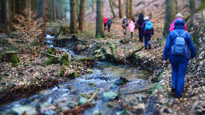 Mehrfach wurde der Sandtalsbach überquert