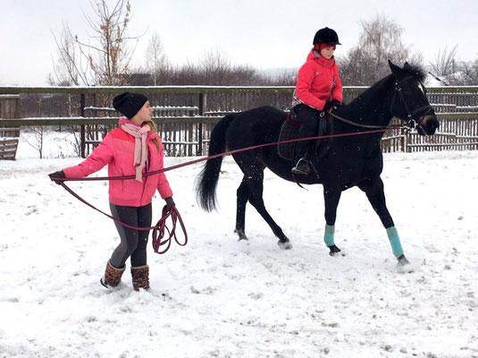 Занятия конным спортом Самара