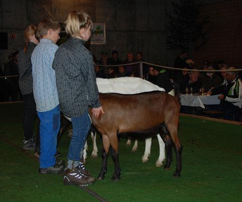 Deborahs Sieg am Jungzüchterwettbewerb