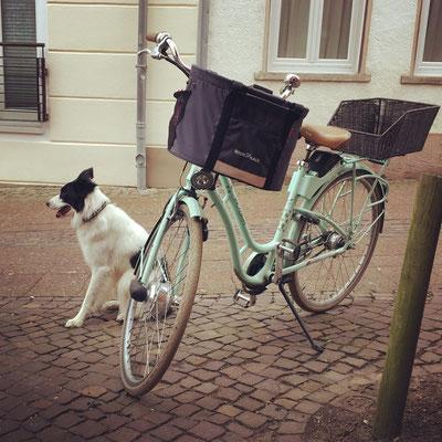 Auch in der Stadt macht Fahrrad fahren Spaß.