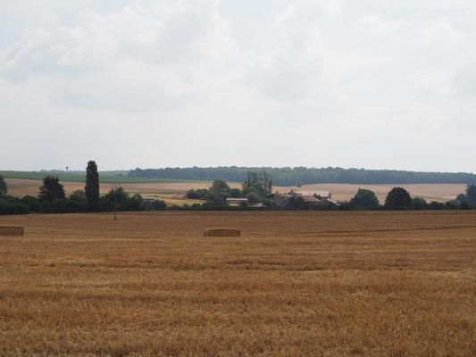 Felder und Wiesen in den Vogesen