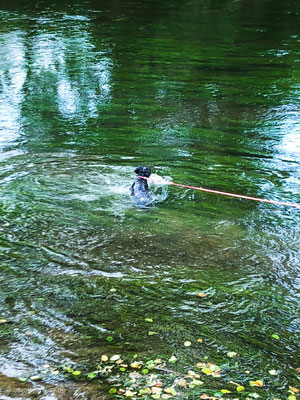 Abgesichert mit der Leine kann der Zwerg nicht davon schwimmen