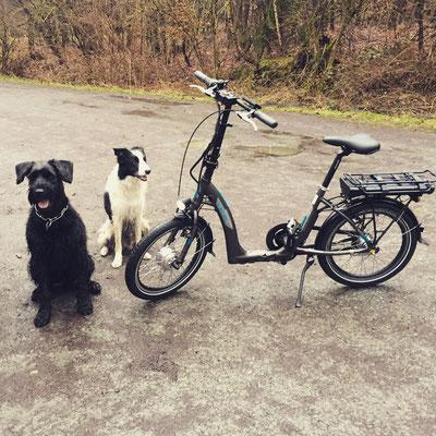 Die erste Tour mit den nagelneuen Faltrad