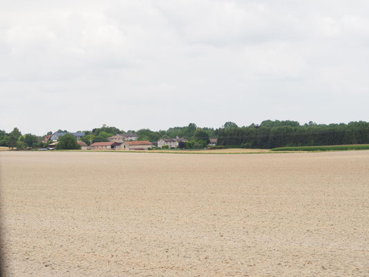 Felder in Verneville