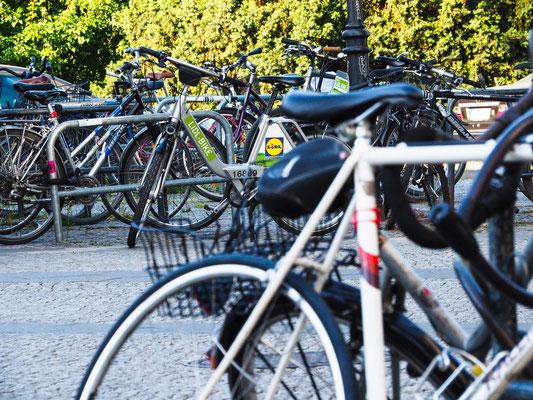 Gefühlt war das Lidl-Bike am häufigsten vertreten