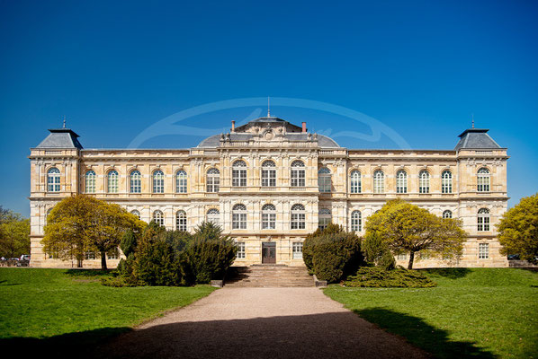 Naturkundemuseum Gotha