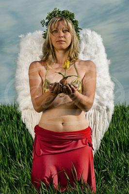 Mutter Erde muss ein Engel sein