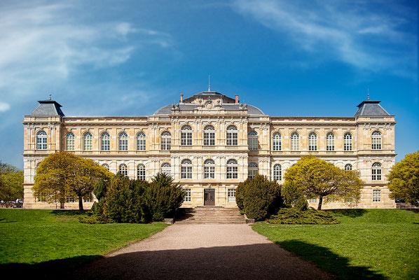 Naturkundemuseum Gotha YourRevenge