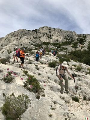 Les non grimpeurs feront une boucle supplémentaire vers le Mont Puget
