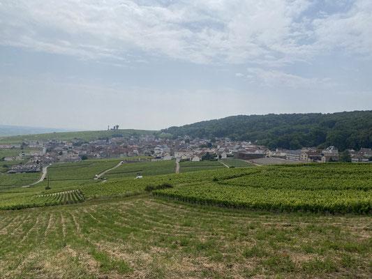 Chalindrey et les vignes de Champagne