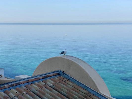 La mer est magnifique sans le trafic maritime