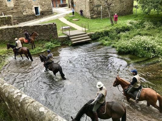 Certains font le pèlerinage à cheval. Pas plus rapide qu'un bon marcheur et avec beaucoup plus d'arrêts.