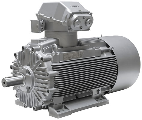 Explosionsgeschützter Loher Chemstar / Industrie Motor © Siemens AG 2019, Alle Rechte vorbehalten