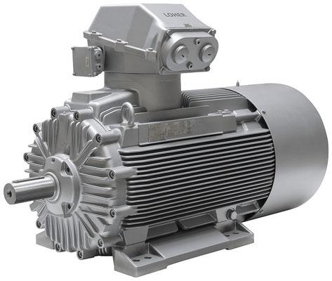 Explosionsgeschützter Loher Chemstar / Industrie Motor © Siemens AG 2020, Alle Rechte vorbehalten