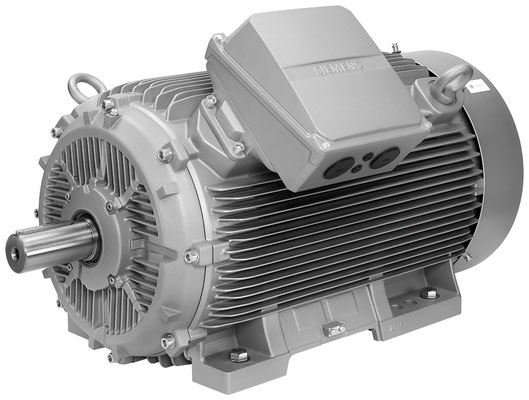SIMOTICS SD Next Generation, AH315, 1LE5-Reihe © Siemens AG 2019, All rights reserved