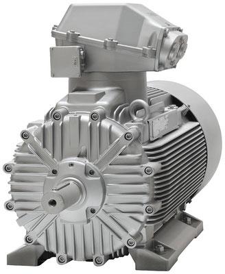 Explosionsgeschützter Loher Chemstar Motor © Siemens AG 2019, Alle Rechte vorbehalten