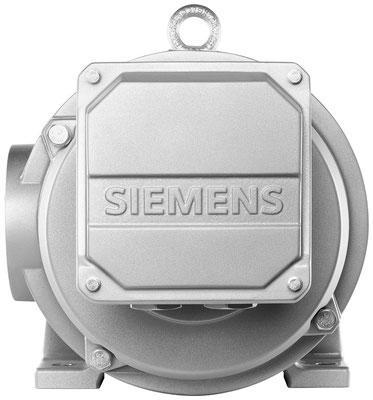 Niederspannungsmotor SIMOTICS DP Rollgangmotor © Siemens AG 2020, Alle Rechte vorbehalten