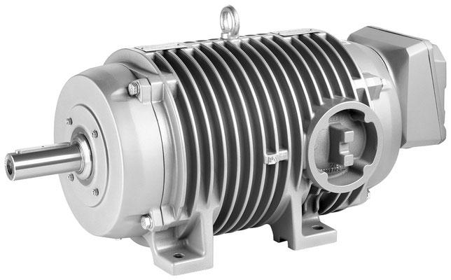 Niederspannungsmotor SIMOTICS DP Rollgangmotor © Siemens AG 2019, Alle Rechte vorbehalten