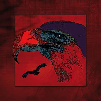 Aigle rouge - 2011