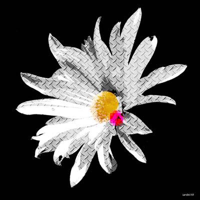 Fleur Métal III - 2017