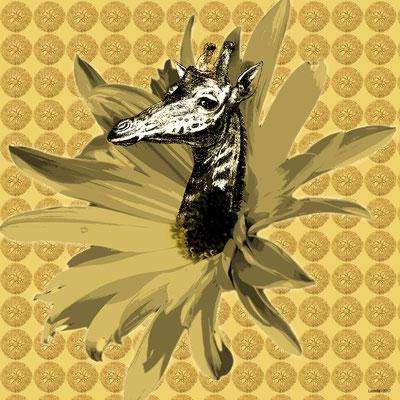 Les girafes naissent dans les fleurs - 2017