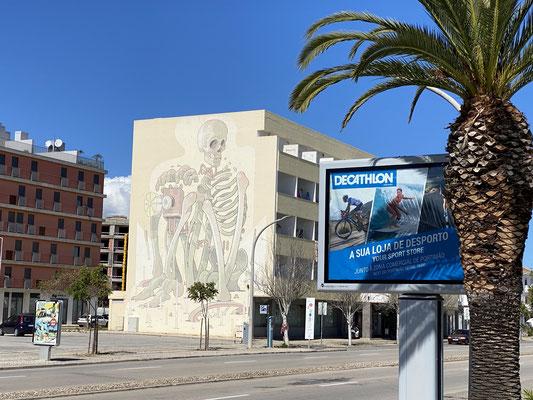 ... Was will uns der Künstler sagen .... (Gebäude direkt gegenüber der Marina)