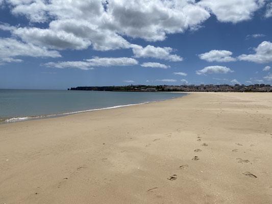 (Noch) nicht ganz legal, habe ich mich diese Woche auch einmal an den Strand getraut ... es waren ein paar herrliche Tage diese Woche ... viel Sonne und super Temperaturen mit einer leichten Brise ... da will man eigentlich nur noch raus aufs Wasser ...
