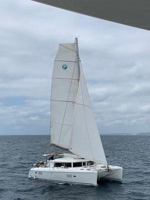 Unter vollen Segeln ging es bei mäßig Wind gut voran ...