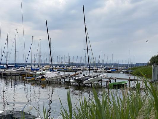 Nur 200 Meter entfernt das Steinhuder Meer ... lang lang ist es her, aber ich glaube Ende der siebziger Jahre war ich hier mal mit Nachbarn aus Langenhagen segeln ...
