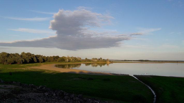 Lac du Der en Champagne (Septembre 2017)