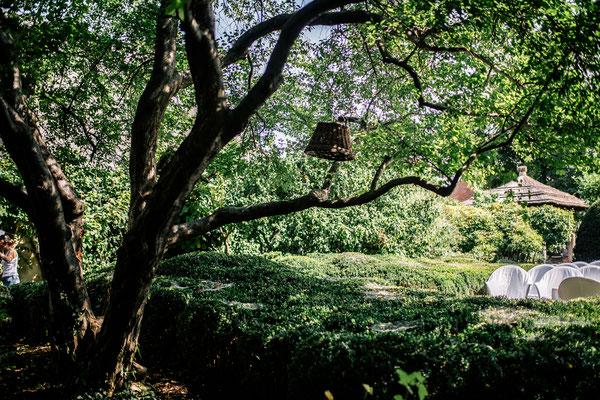 Natur pur - auch für die Hochzeitsfotos im taubenkobel © Philipp Horak