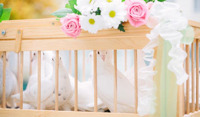 Weiße Hochzeitstauben verkörpern Liebe, Glück, Treue und Frieden
