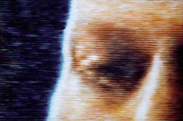 <b>Captain Ripley</b><br />2001<br />Acryl auf Baumwolle<br />90 x 60 cm