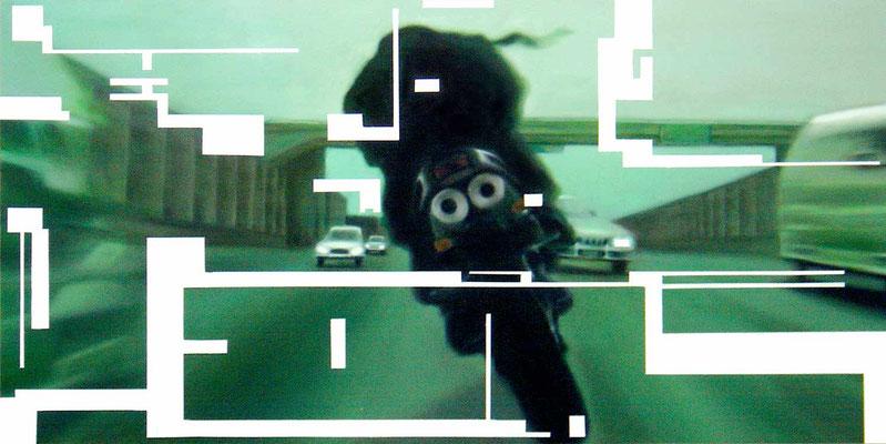 <b>Opferkamera 4</b><br />2004<br />Acryl auf Baumwolle<br />250 x 125 cm
