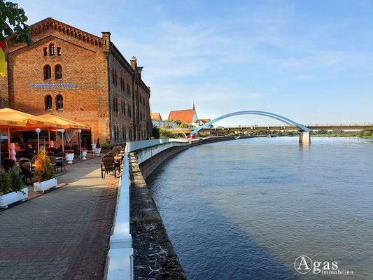 Immobilienmakler Frankfurt (Oder) - Taverne Athos a.d. Oder - Blick zur Stadtbrücke / Most Graniczny Słubice-Frankfurt