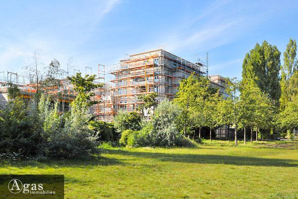 Sudio House Berlin am Mauerpark (Baustelle 6)