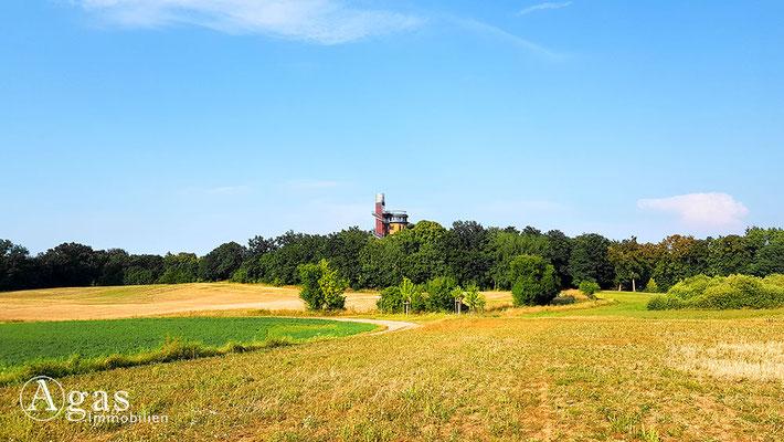 Immobilienmakler Joachimsthal - Aussichtsplattform am Wasserturm (Biorama Projekt)