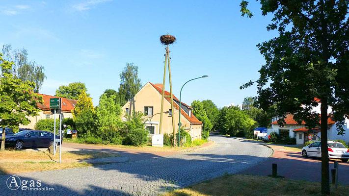 Marquardt-Potsdam - Storchennest an der Haupstraße beim Landgasthof