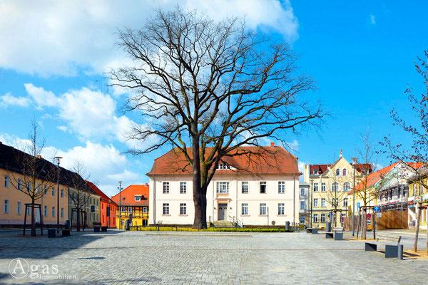 Bibliothek im alten Stadthaus - Makler in Strausberg