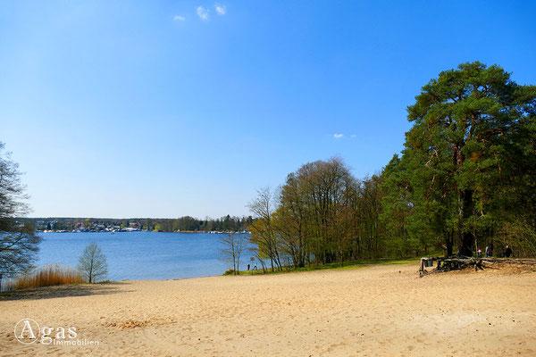 Immobilienmakler Grünheide - Sandstrand am Werlsee