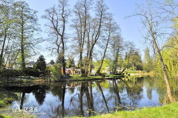 Mühlenbeck - Teich am Tegeler Fließ