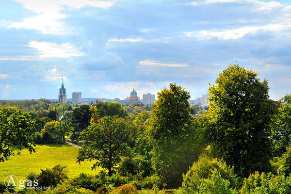 Potsdam-Babelsberg - Blick vom Hügel im Park auf die Potsdamer Skyline