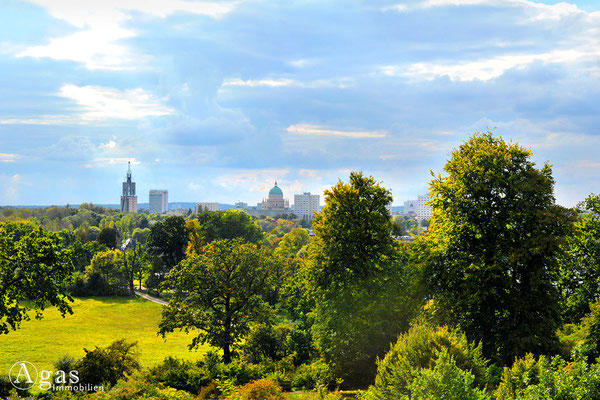 Immobilienmakler Babelsberg - Blick vom Hügel im Park auf die Potsdamer Skyline
