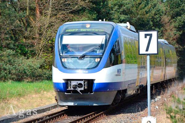 Heidekrautbahn in Basdorf 1