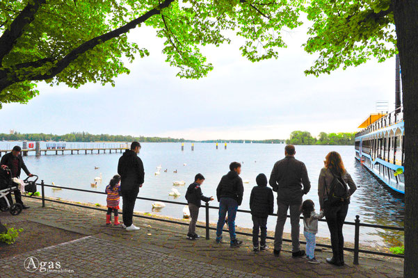 Berlin-Tegel - An der Greenwichpromenade