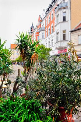 Köpenicker Altstadt 2