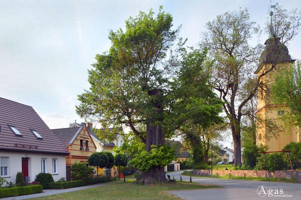 Immobilienmakler Dahme-Spreewald - Motzen